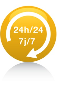 24-24-jaune